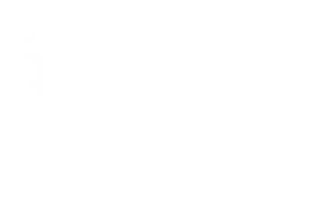 TechnoSulfur logo in white